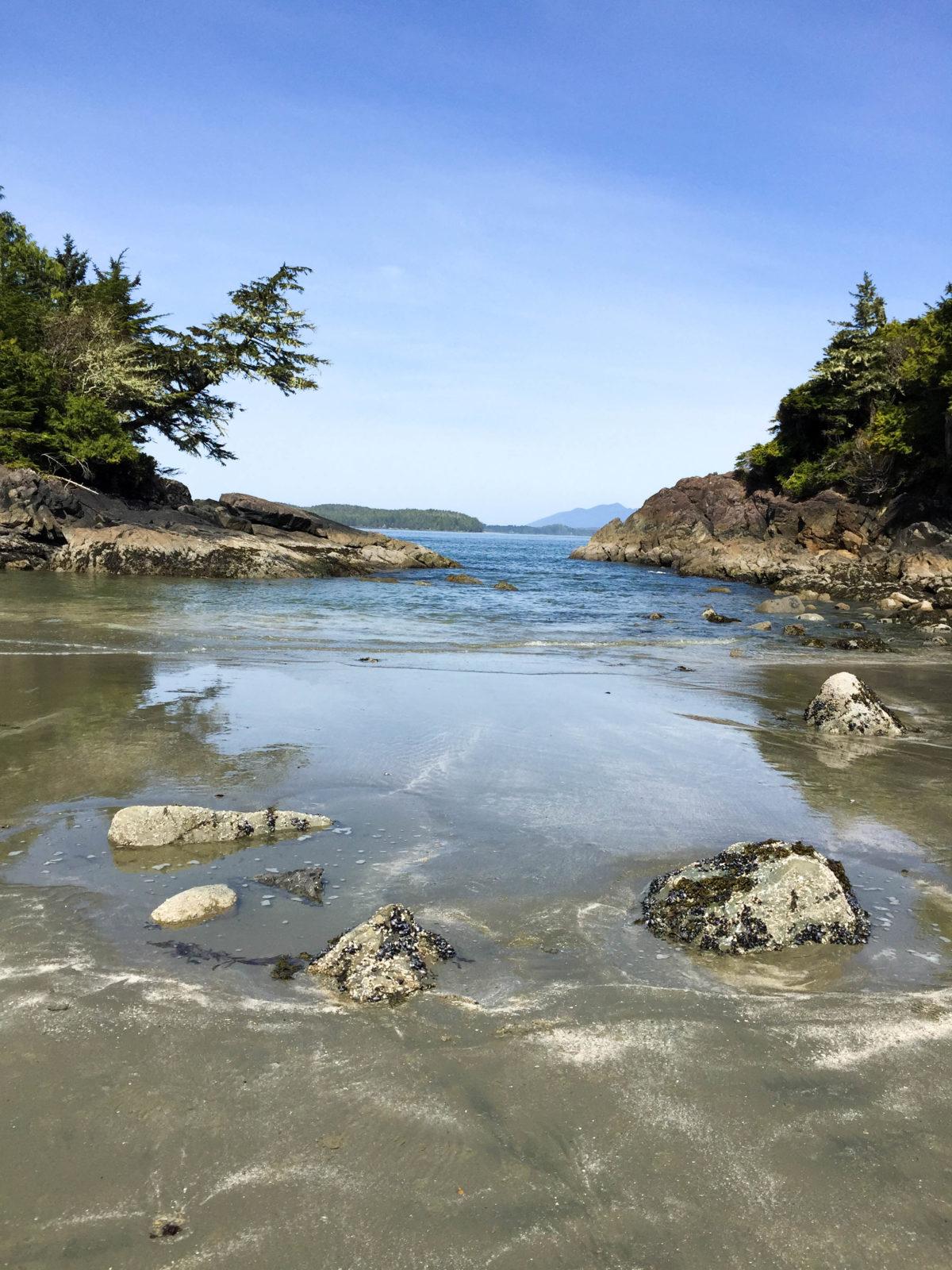 Tofino, beach, ocean, travel, beachfront, vancouver island, pet friendly, resort