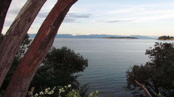 ocean view from gazebo