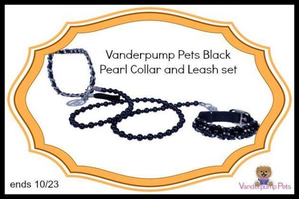 collar and leash