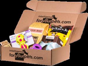 IFYP-box