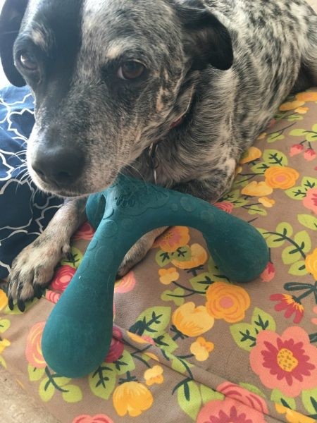 Wox Dog Toy - powered-by-mom