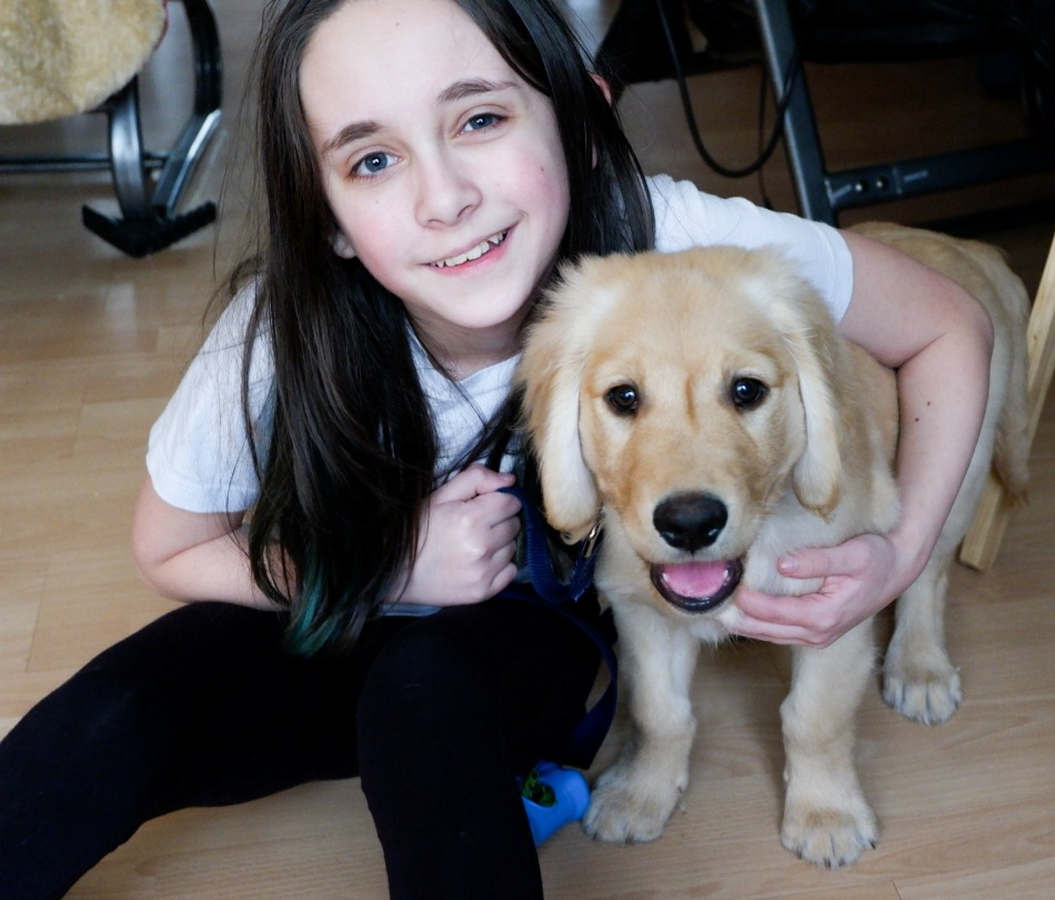puppy Bentley