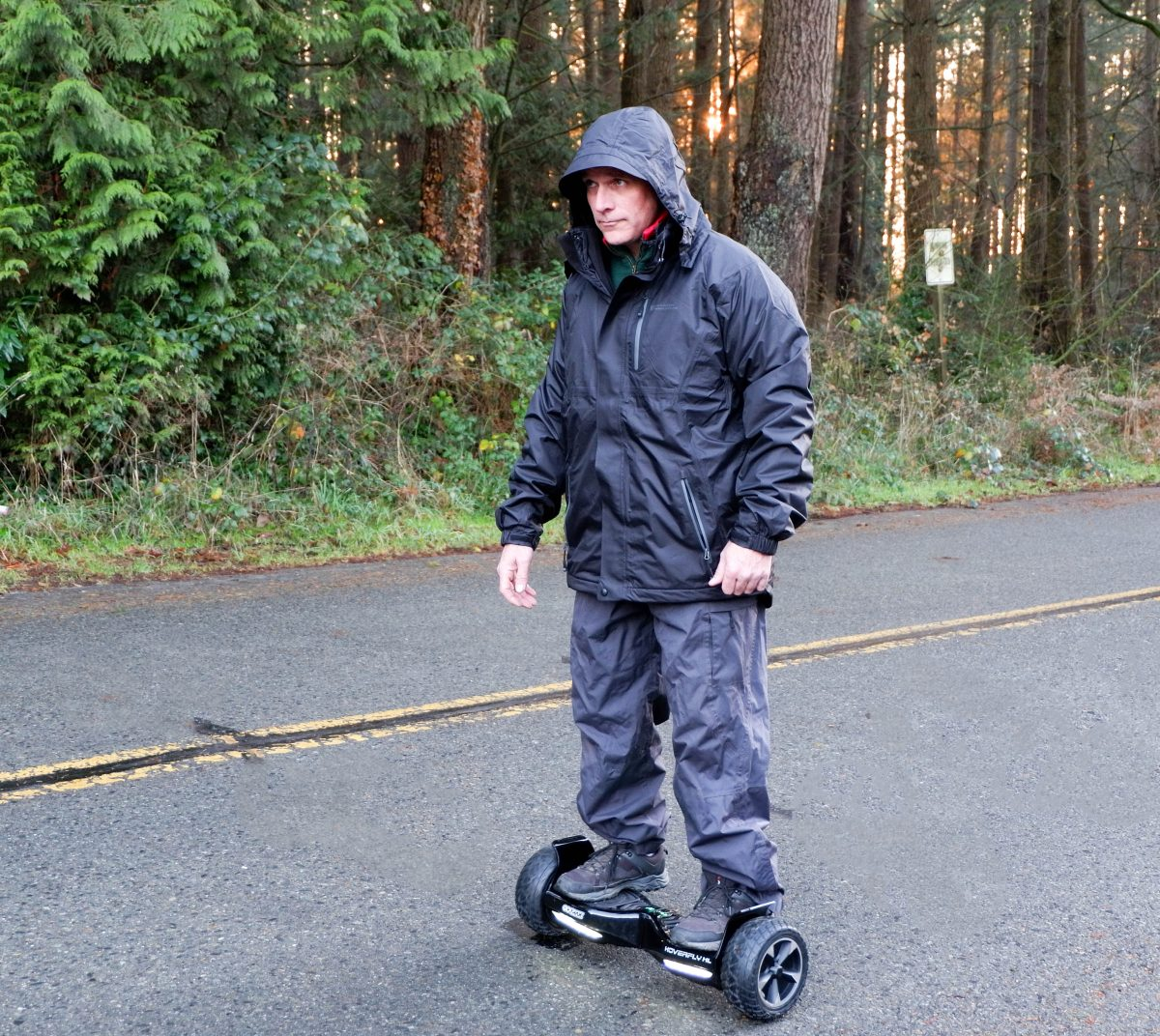 hoverfly hoverboard