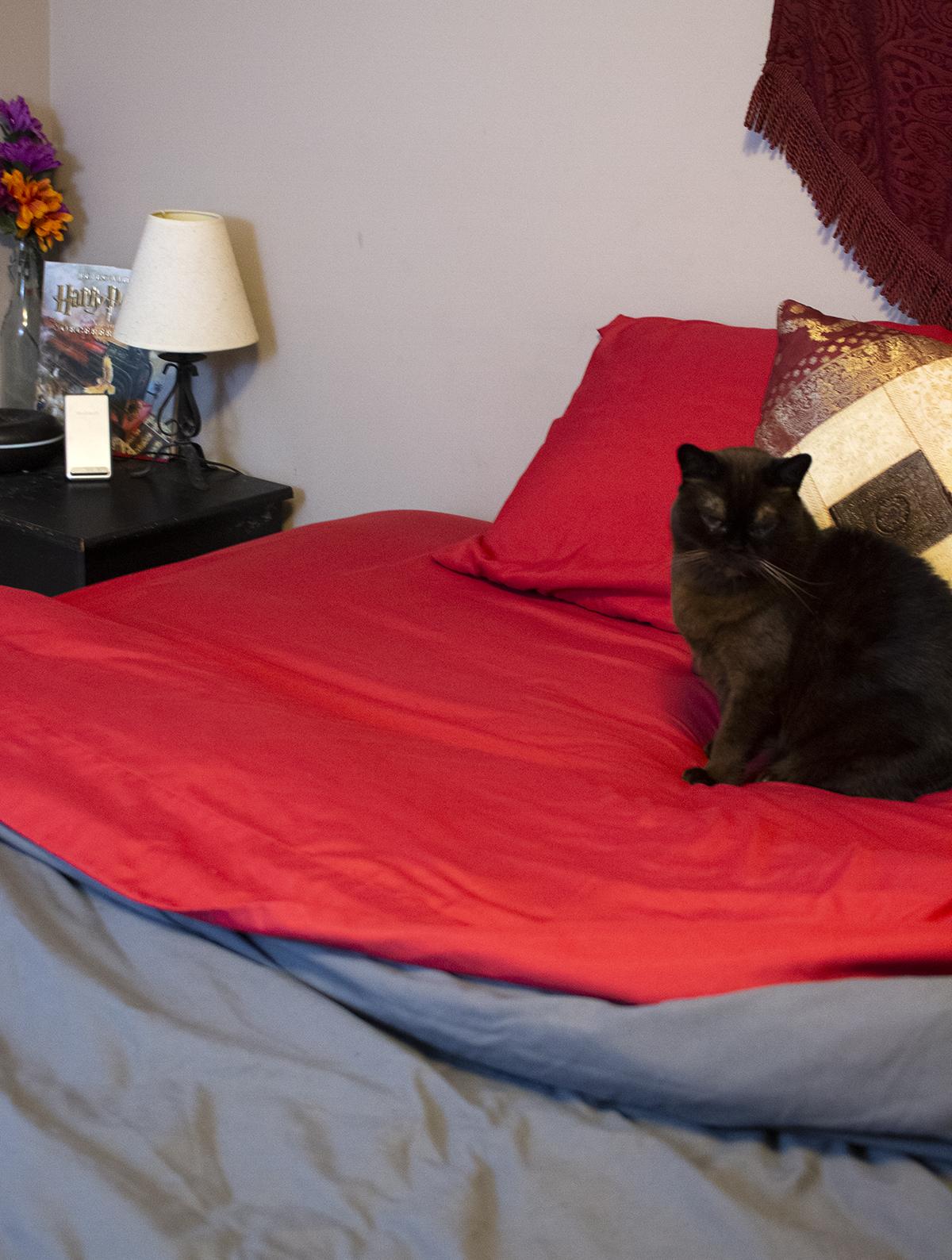 Cozy Comfort PeachSkinSheets