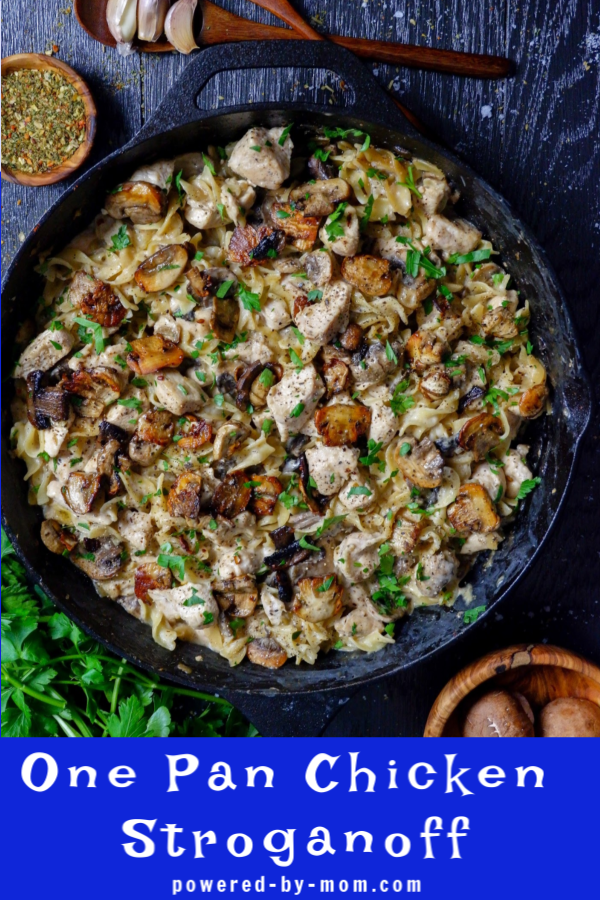 This delicious Chicken Stroganoff Recipe brings life to a classic dish by using chicken instead for a healthier but oh so tasty meal that is hearty and easy to make.
