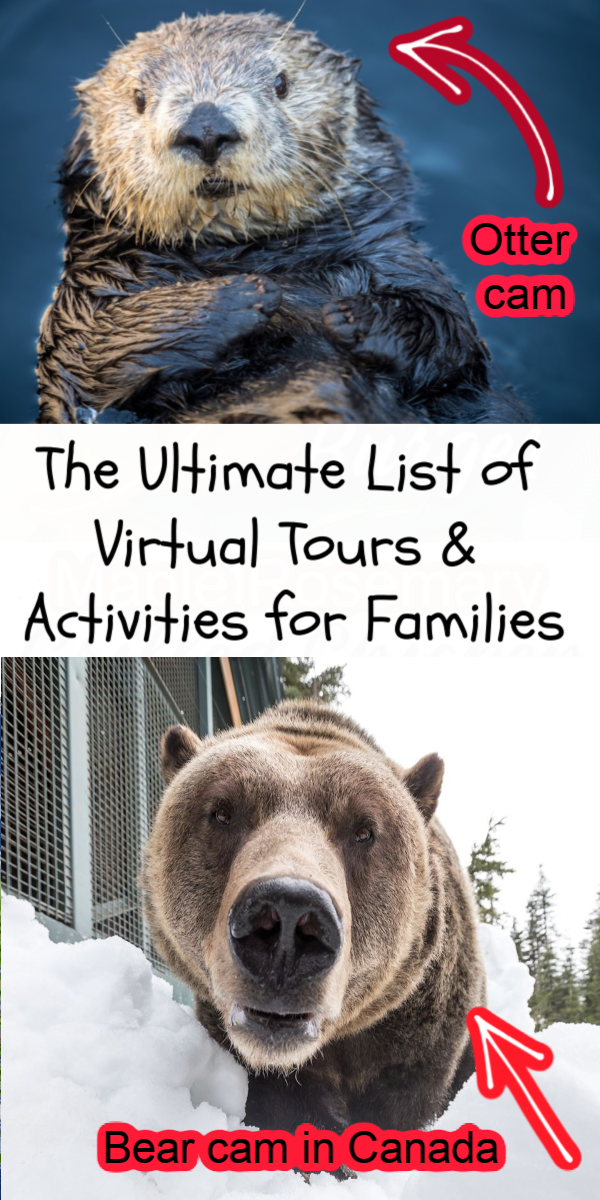 If you're looking for some great online activities for families, we've got a list for you. The tours and activities will also take you all over the world from Canada, all over the United States to Europe, all without ever having to leave your home!