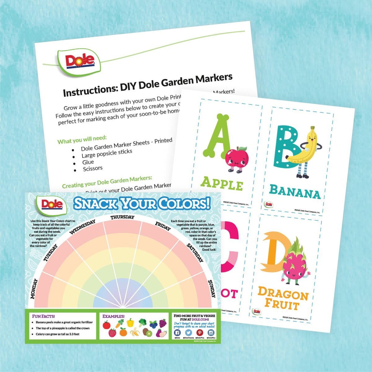 garden and coloring activity sheets
