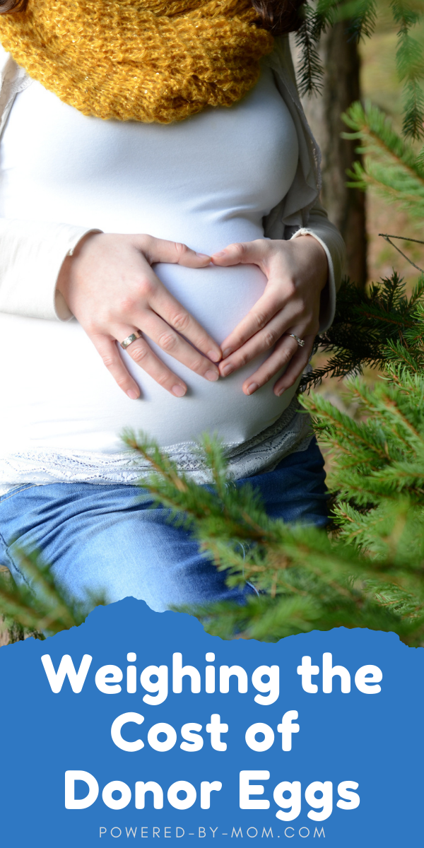 For many individuals and couples hoping to conceive after their struggles with infertility, fresh or frozen donor eggs are an ideal solution. Unfortunately, the cost of any fertility treatment can seem less than pleasant at first glance.