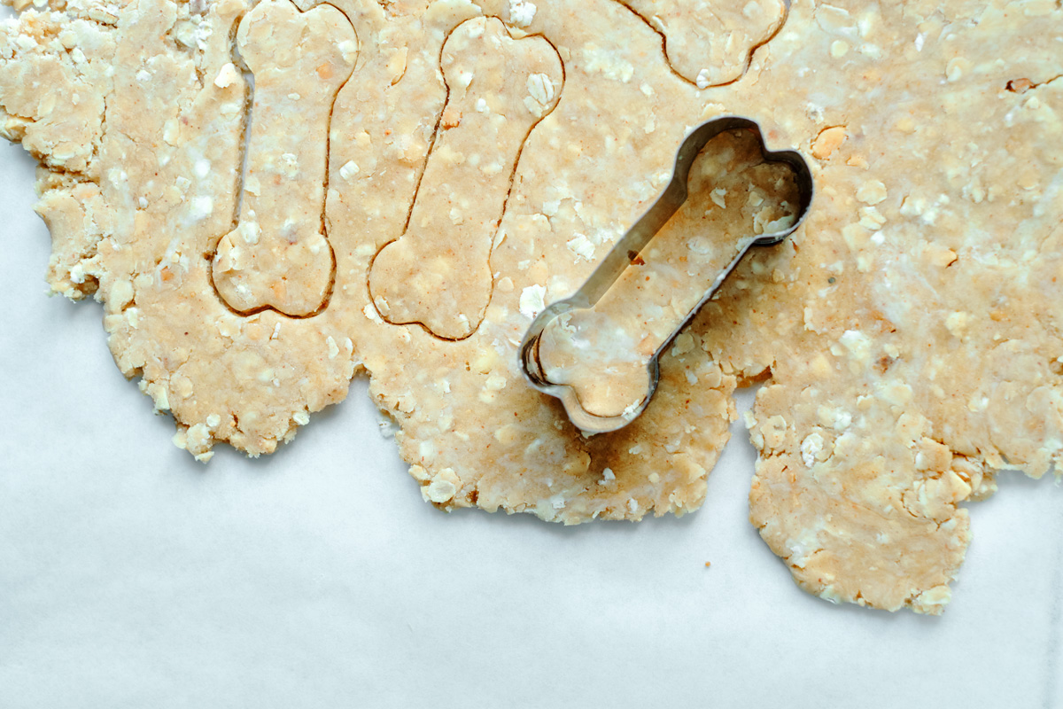 dog treats with rolled oats