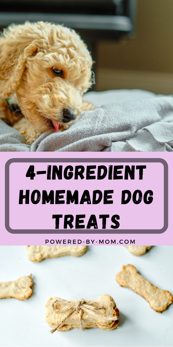 Homemade Dog Treats with Rolled Oats and Peanut Butter are a perfect choice for giving your dog a special treat you know has healthy ingredients!