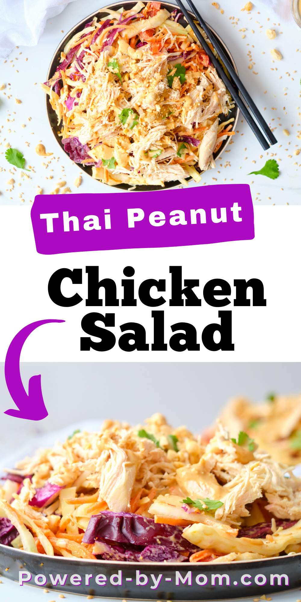 This delicious Thai Peanut Chicken Salad has everything you need in a meal from the crisp cabbage, veggies, chicken and topped with a yummy peanut sauce.