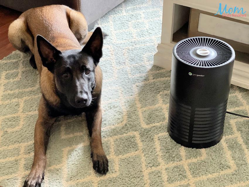 germguardian air purifier