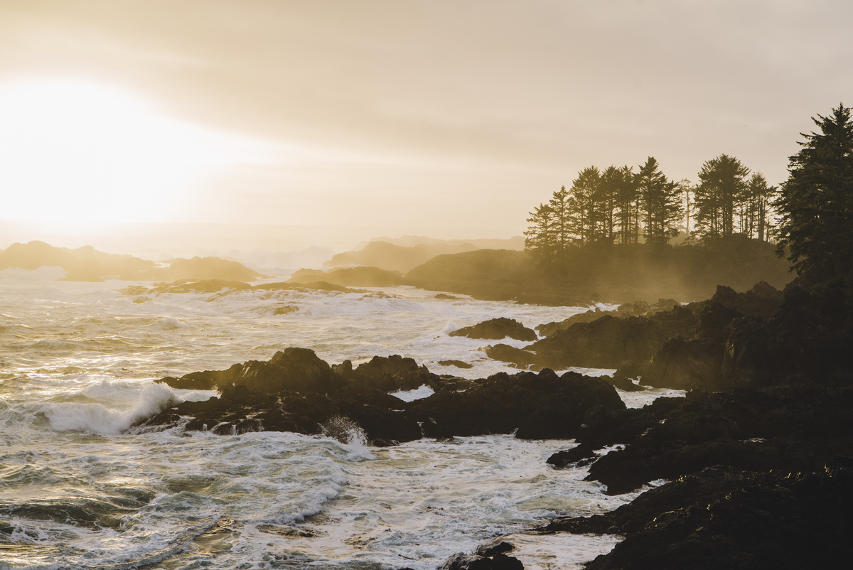 Sunrise at Wild Pacific Trail, the Coast of Vancouver Island in Ucluelet. Credit: Tourism Vancouver Island/Ben Giesbrecht